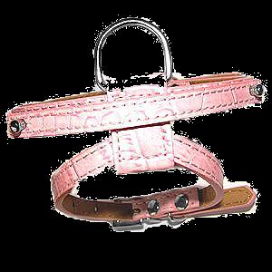 chihuahua roze hond tuig